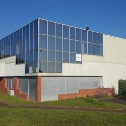 Location Bureau Cesson-Sévigné 1270 m²