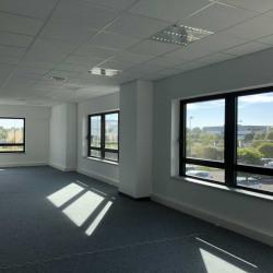 Location Bureau Schiltigheim 137 m²