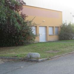 Location Local d'activités Ingré 500 m²