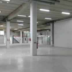 Location Local d'activités Marolles-en-Brie 1226 m²