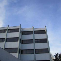 Location Bureau Talence 55 m²