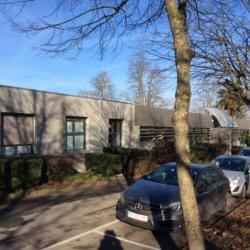 Location Bureau Saint-Thibault-des-Vignes 45 m²