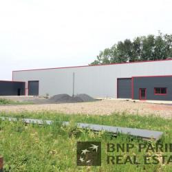 Location Local d'activités Gondecourt 972 m²