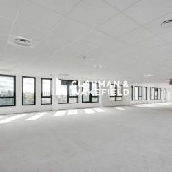 Location Bureau Vaulx-en-Velin 1260 m²