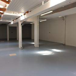 Location Entrepôt Le Pré-Saint-Gervais 260 m²