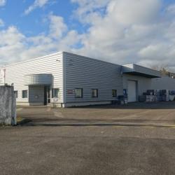 Location Local d'activités Vourles 1250 m²