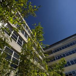 Location Bureau Nancy (54000)