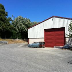 Location Local d'activités Rochetoirin 525 m²