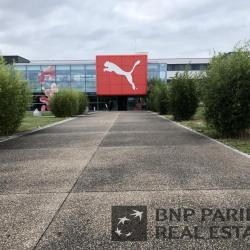 Vente Entrepôt Illkirch-Graffenstaden 11656 m²