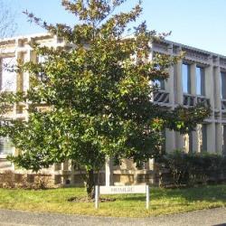 Location Bureau Saint-Aubin 170 m²