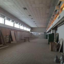 Vente Local d'activités Sélestat 650 m²