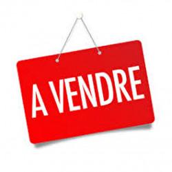 Vente Local commercial Biganos (33380)