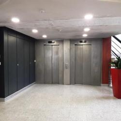 Location Bureau Lyon 9ème 692 m²