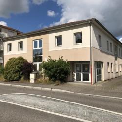 Vente Bureau Haguenau 650 m²