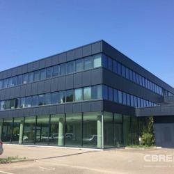 Vente Bureau Entzheim 291,8 m²