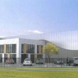 Vente Local d'activités Roissy-en-France 5200 m²