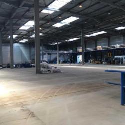 Vente Entrepôt Cestas 5673 m²