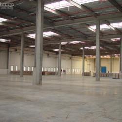 Location Entrepôt Santeny 17486 m²