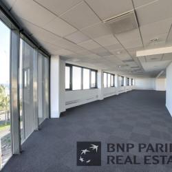 Location Bureau Nice 517 m²