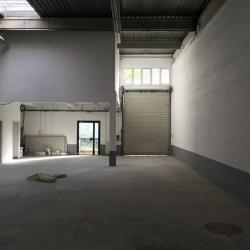 Vente Local d'activités Lisses 335 m²
