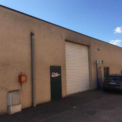 Location Local d'activités Meyzieu 225 m²