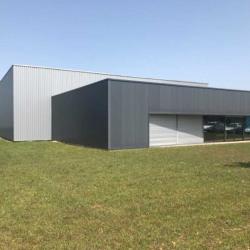 Location Local d'activités Migné-Auxances 1447 m²