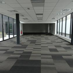 Location Bureau Auzeville-Tolosane 162,37 m²
