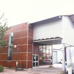 Location Bureau Le Petit-Quevilly 137 m²