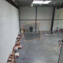 Location Local d'activités Bailly-Romainvilliers 504 m²