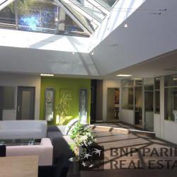 Vente Bureau Villeneuve-Loubet 390 m²