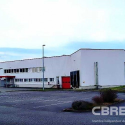 Vente Entrepôt Bischwiller (67240)