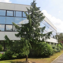 Location Local d'activités Roissy-en-France (95700)