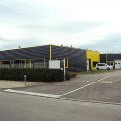 Location Local d'activités Chevigny-Saint-Sauveur 1036 m²