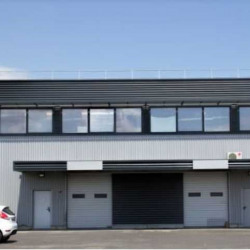 Location Local d'activités Gignac-la-Nerthe 6523,12 m²