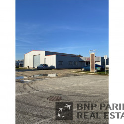 Vente Local d'activités Montech 596 m²