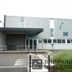 Location Local d'activités Pessac 514 m²