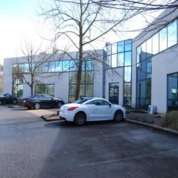 Vente Bureau Mulhouse 1784 m²