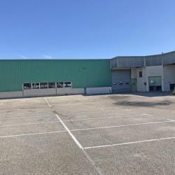 Vente Local d'activités Saint-Quentin-Fallavier 3390 m²