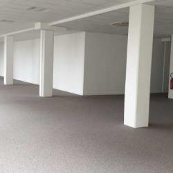 Location Bureau Villejuif 250 m²