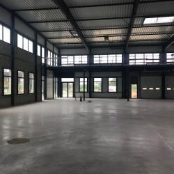 Location Local d'activités Sucy-en-Brie 743 m²
