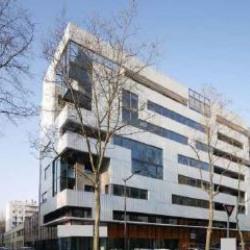 Location Bureau Lyon 2ème 222 m²