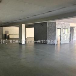 Location Bureau Vallauris 500 m²