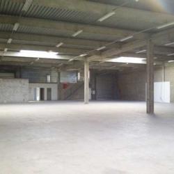 Location Local d'activités Saint-Thibault-des-Vignes 3283 m²