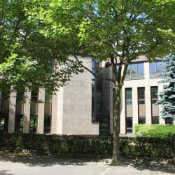 Vente Bureau Montigny-le-Bretonneux 3076 m²