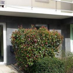 Location Bureau Clermont-Ferrand 54 m²