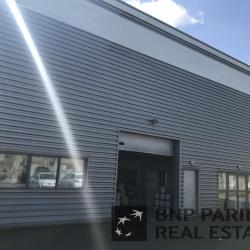Location Local d'activités Saint-Herblain 523 m²