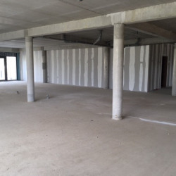 Location Local commercial Isneauville 300 m²