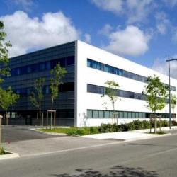 Location Bureau Montpellier (34000)