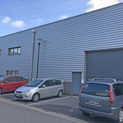 Location Local d'activités Bondues 510 m²