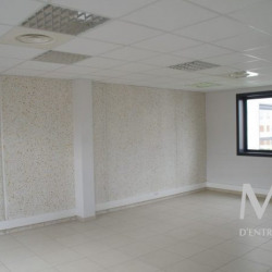 Location Local d'activités Meyzieu 622 m²